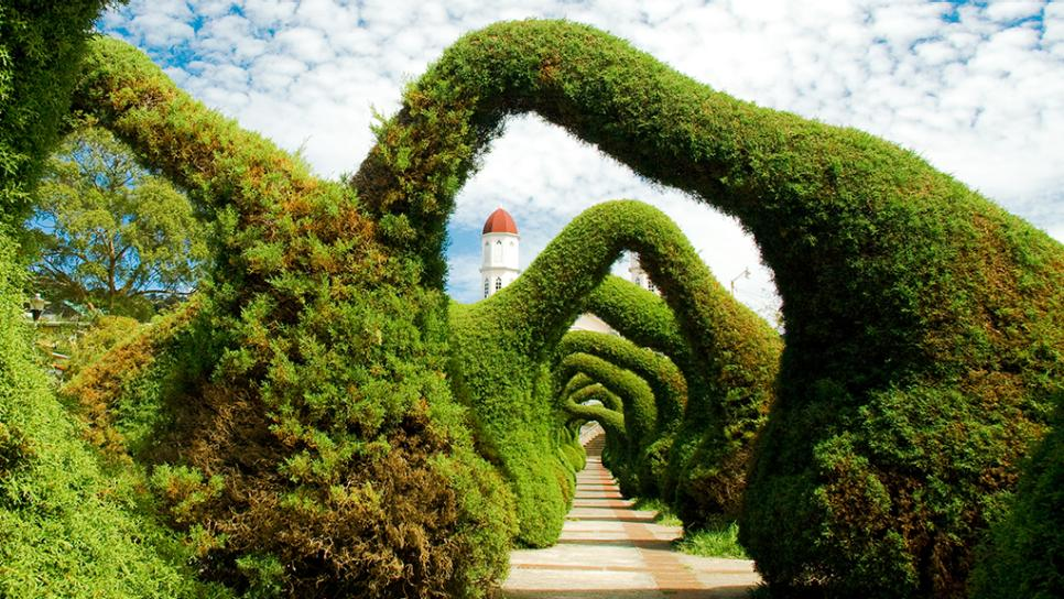 parque-francisco-alvarado-topiaries-zancera-costa-rica-jpg-rend-tccom-966-544