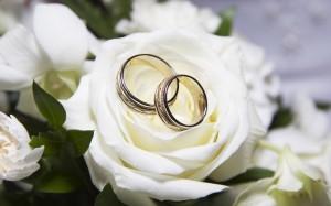 wedding-portal